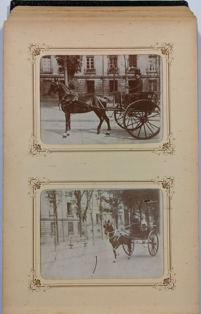 Early 20th Century Photo Album of Horses from France.