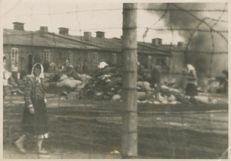 Photo-album of a soldier in the Royal Air Force (RAF), recording the end of World War II with photos from Bergen-Belsen