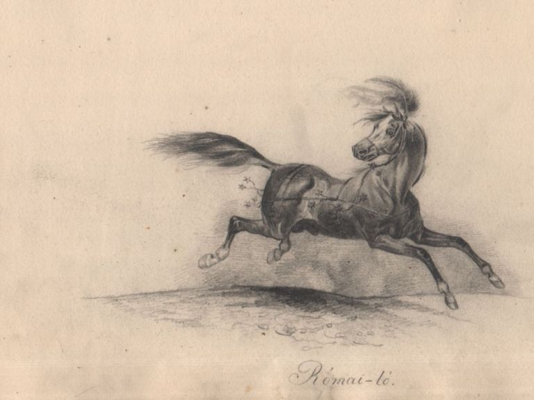 [Skatchbook of Kálmán Jankó.] Janko 1844.